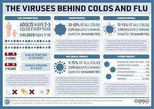 Les virus de la grippe et du rhume